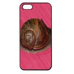 Snail Pink Background Apple iPhone 5 Seamless Case (Black)