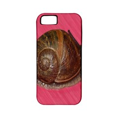 Snail Pink Background Apple iPhone 5 Classic Hardshell Case (PC+Silicone)