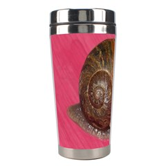 Snail Pink Background Stainless Steel Travel Tumblers