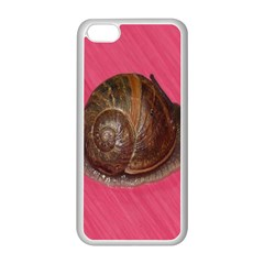 Snail Pink Background Apple iPhone 5C Seamless Case (White)