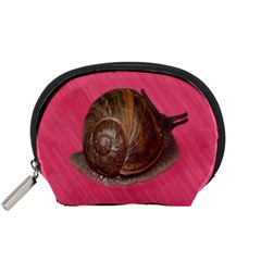 Snail Pink Background Accessory Pouches (small)