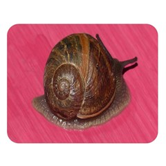 Snail Pink Background Double Sided Flano Blanket (Large)