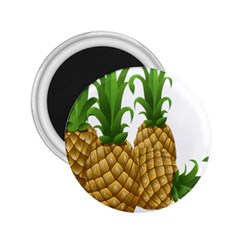 Pineapples Tropical Fruits Foods 2.25  Magnets