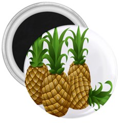 Pineapples Tropical Fruits Foods 3  Magnets