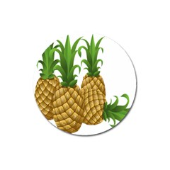 Pineapples Tropical Fruits Foods Magnet 3  (Round)