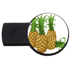 Pineapples Tropical Fruits Foods USB Flash Drive Round (1 GB)