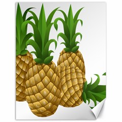 Pineapples Tropical Fruits Foods Canvas 18  x 24