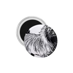 Cairn Terrier Greyscale Art 1.75  Magnets