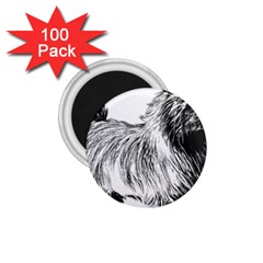 Cairn Terrier Greyscale Art 1.75  Magnets (100 pack)