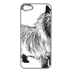 Cairn Terrier Greyscale Art Apple iPhone 5 Case (Silver)