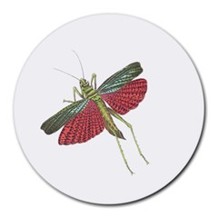 Grasshopper Insect Animal Isolated Round Mousepads