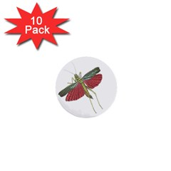 Grasshopper Insect Animal Isolated 1  Mini Buttons (10 pack)
