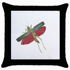 Grasshopper Insect Animal Isolated Throw Pillow Case (Black)
