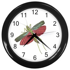 Grasshopper Insect Animal Isolated Wall Clocks (Black)
