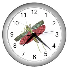 Grasshopper Insect Animal Isolated Wall Clocks (Silver)
