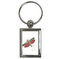 Grasshopper Insect Animal Isolated Key Chains (Rectangle)