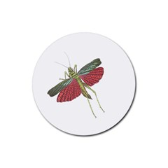 Grasshopper Insect Animal Isolated Rubber Round Coaster (4 pack)
