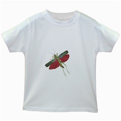 Grasshopper Insect Animal Isolated Kids White T-Shirts