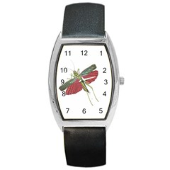 Grasshopper Insect Animal Isolated Barrel Style Metal Watch