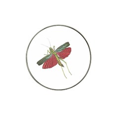 Grasshopper Insect Animal Isolated Hat Clip Ball Marker