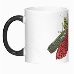Grasshopper Insect Animal Isolated Morph Mugs