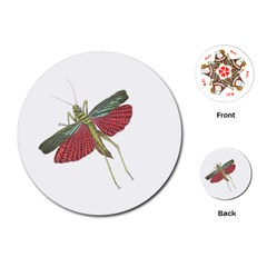Grasshopper Insect Animal Isolated Playing Cards (Round)