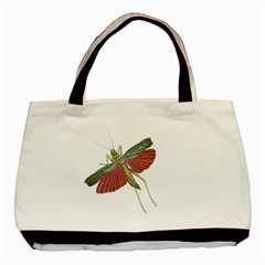 Grasshopper Insect Animal Isolated Basic Tote Bag