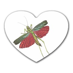 Grasshopper Insect Animal Isolated Heart Mousepads