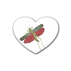 Grasshopper Insect Animal Isolated Heart Coaster (4 pack)