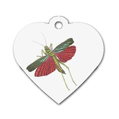 Grasshopper Insect Animal Isolated Dog Tag Heart (two Sides)