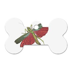 Grasshopper Insect Animal Isolated Dog Tag Bone (Two Sides)