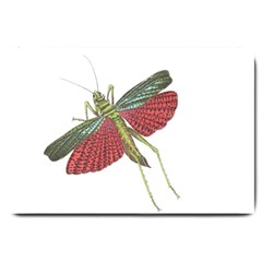 Grasshopper Insect Animal Isolated Large Doormat