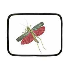 Grasshopper Insect Animal Isolated Netbook Case (Small)
