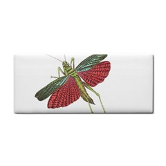Grasshopper Insect Animal Isolated Cosmetic Storage Cases