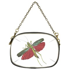 Grasshopper Insect Animal Isolated Chain Purses (two Sides)
