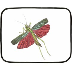Grasshopper Insect Animal Isolated Double Sided Fleece Blanket (Mini)