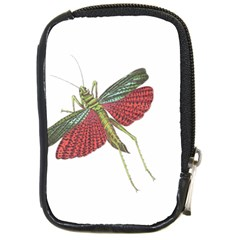 Grasshopper Insect Animal Isolated Compact Camera Cases