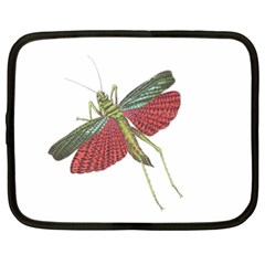 Grasshopper Insect Animal Isolated Netbook Case (XXL)