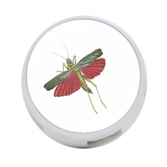 Grasshopper Insect Animal Isolated 4-Port USB Hub (Two Sides)