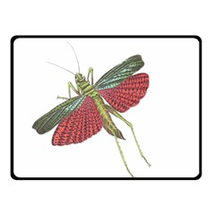 Grasshopper Insect Animal Isolated Fleece Blanket (Small)