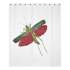 Grasshopper Insect Animal Isolated Shower Curtain 60  x 72  (Medium)