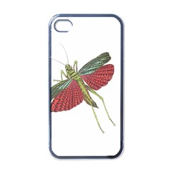 Grasshopper Insect Animal Isolated Apple iPhone 4 Case (Black)