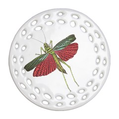 Grasshopper Insect Animal Isolated Ornament (Round Filigree)