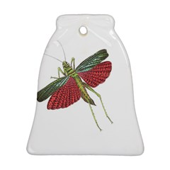 Grasshopper Insect Animal Isolated Bell Ornament (Two Sides)