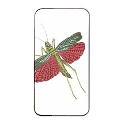 Grasshopper Insect Animal Isolated Apple iPhone 4/4s Seamless Case (Black)