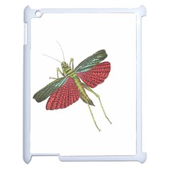 Grasshopper Insect Animal Isolated Apple iPad 2 Case (White)