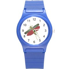 Grasshopper Insect Animal Isolated Round Plastic Sport Watch (S)