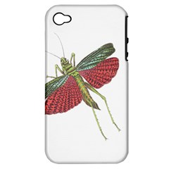 Grasshopper Insect Animal Isolated Apple iPhone 4/4S Hardshell Case (PC+Silicone)