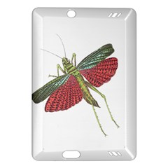 Grasshopper Insect Animal Isolated Amazon Kindle Fire HD (2013) Hardshell Case