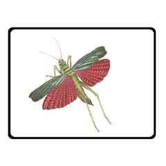 Grasshopper Insect Animal Isolated Double Sided Fleece Blanket (Small)